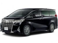 Фотографии автомобильных ковриков для Toyota Alphard