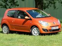 Фотографии автомобильных ковриков для Renault Twingo